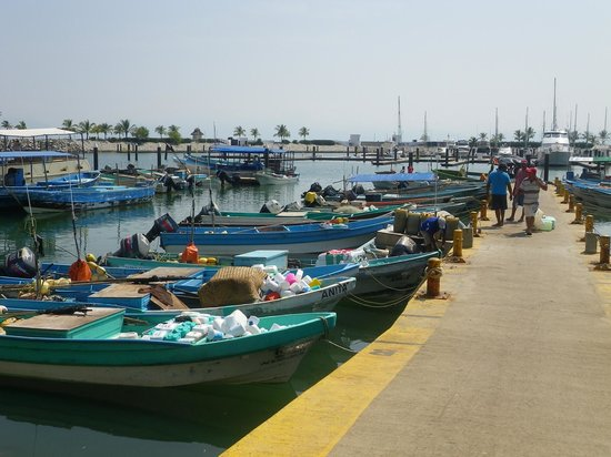 La Cruz de Huanacaxtle Mercado : THE COLOUR FULL FISHING BOATS AT THE MARKET