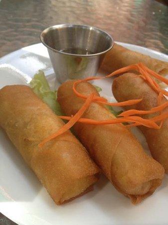 Beauregard's Thai Room: spring rolls