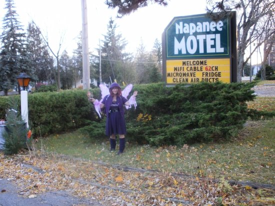 Napanee Motel a neighborhood setting close to all amen.,