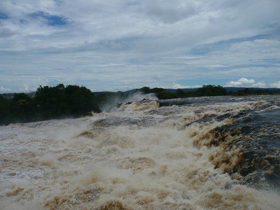 Angel Falls : Canaima
