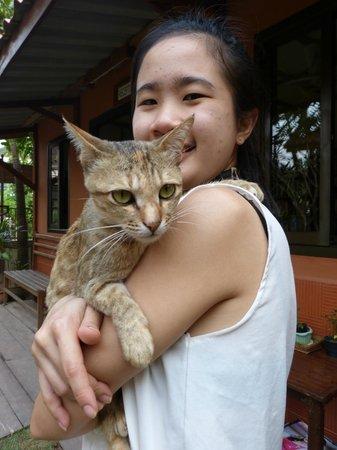 Auberge Sala Inpeng (Mekong Riverside Inn): jeune apprentie hôtelière et son gentil petit chat