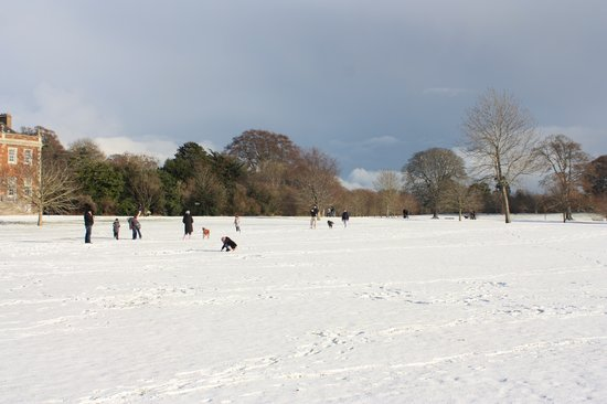 Newbridge House: Snowy fun