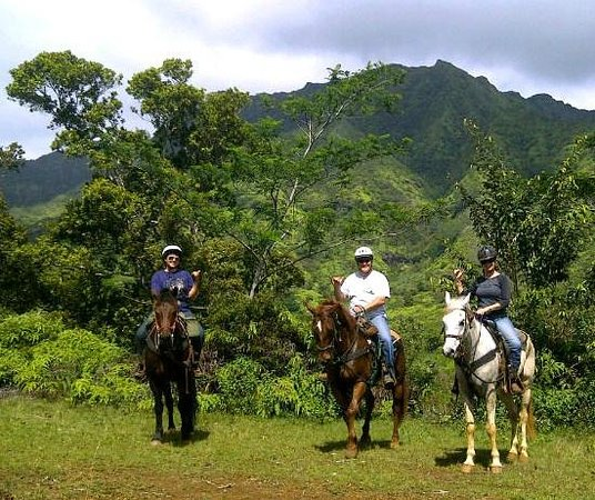 Esprit De Corps Riding Academy