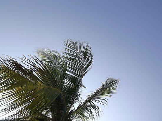 Makunudu Island: Cielo di Makunudu a Marzo