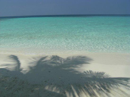Makunudu Island: Il paradiso terrestre...!