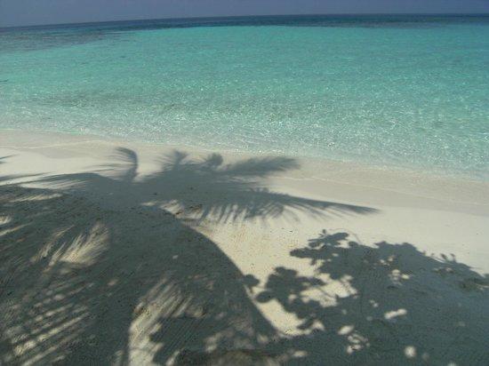 Makunudu Island: Cartolina da Makunudu