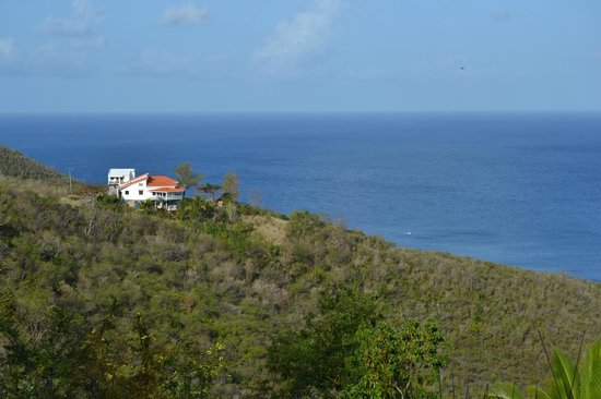 Villawellness St. Lucia: Blick von Zimmer/ Terrasse