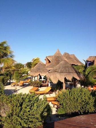 Villas Flamingos: Todo un paraíso