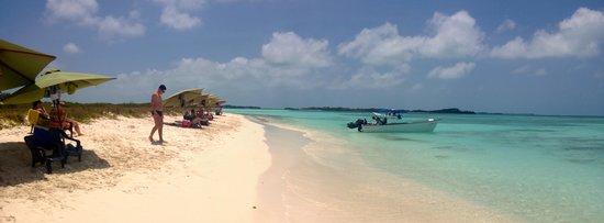 Posada Lagunita: beach