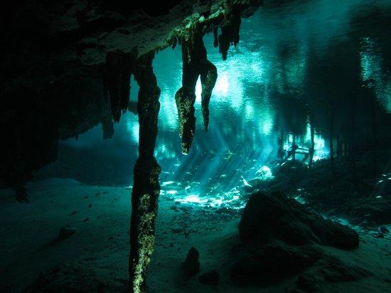 Cenotes Dos Ojos: Formations