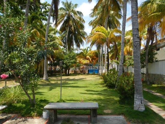 Posada Alemania: Palmengarten