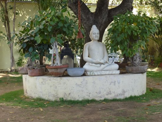 Hotel Anuraag Villa: In the garden...very peaceful dining!