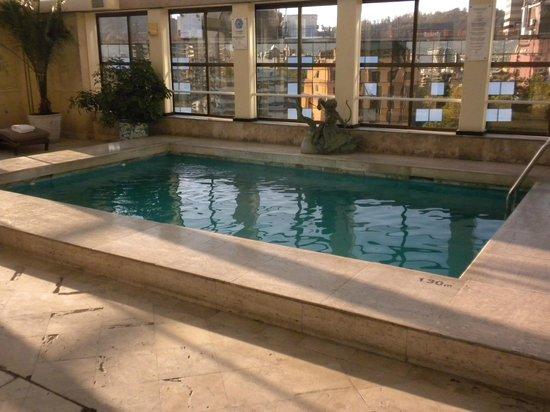 Park Plaza: Swimming pool on top floor