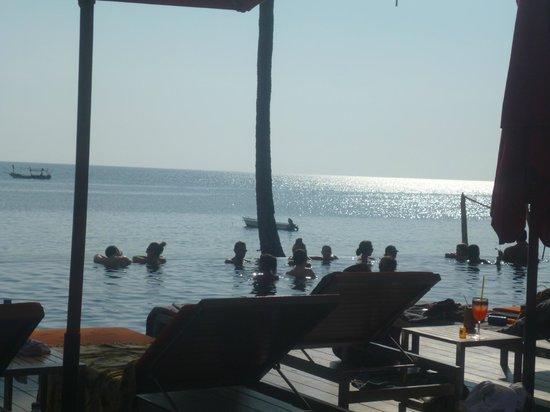 The Coast Resort - Koh Phangan: amazing infinity pool and atmosphere