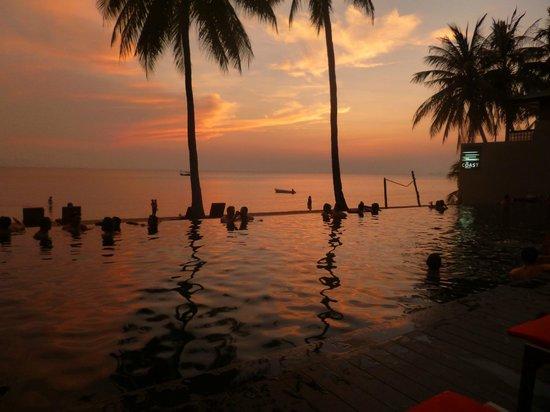 The Coast Resort - Koh Phangan: pool at sunset