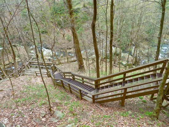 Cloudland Canyon State Park: portion of stairs that bring you down and back