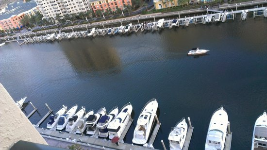 Tampa Marriott Waterside Hotel & Marina: looking down at the marina