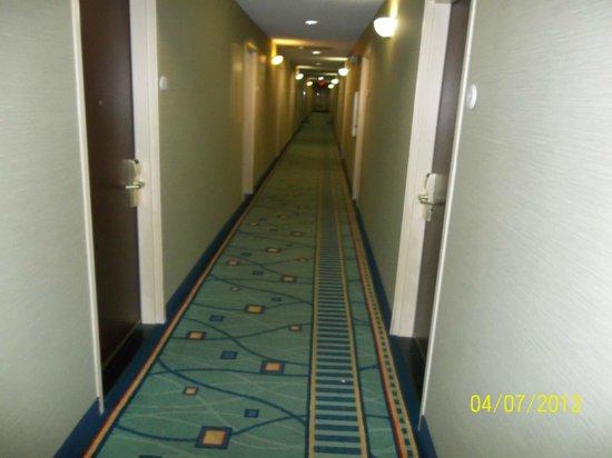 SpringHill Suites Savannah Midtown: hallway