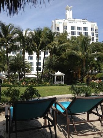 The Palms Hotel & Spa: In giardino, sulla sdraio.