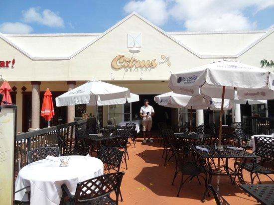 Citrus Seafood Restaurant: Joseph, our waiter