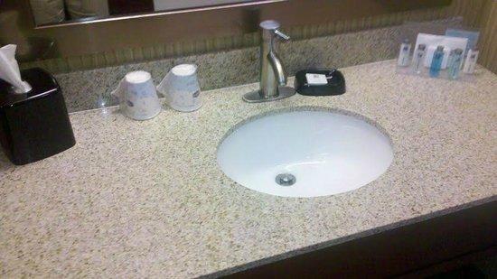 Hampton Inn Danville: Room Bathroom