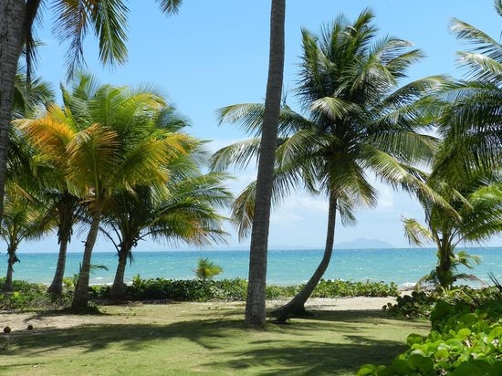 Barefoot Travelers Rooms: Beautiful Beach just at the end of the Street