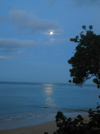 Sheraton Waikiki: The view at an early breakfast