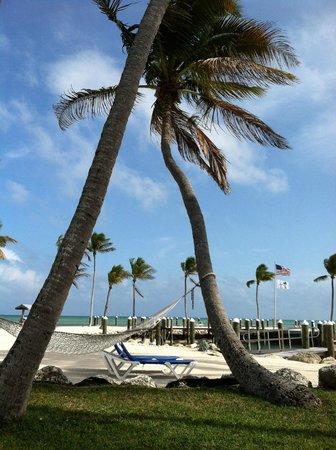 La Siesta Resort & Marina: View from Cottage patio