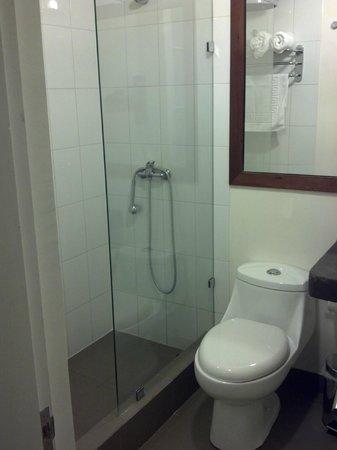 Mm 450 Hotel Boutique : Sala de baño