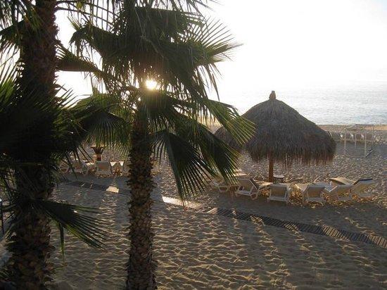 Hacienda del Mar Los Cabos: Beach