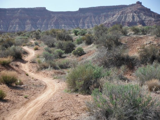 Utah Mountain Biking Adventures: The JEM trail