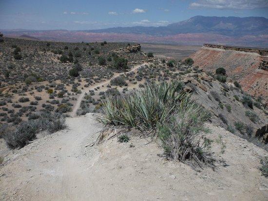 Utah Mountain Biking Adventures: A fun ride down