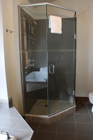 Copper Horse Lodge: shower