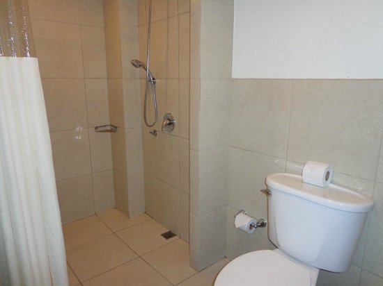 Hotel Presidente: ducha