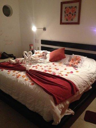 호텔 카사 티쿨 사진