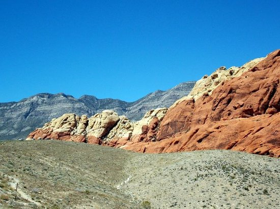 Rock climbers scaling the wall - Picture of Red Rock Canyon ...