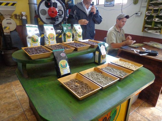 Doka Estate Coffee Tour: molido de cafe