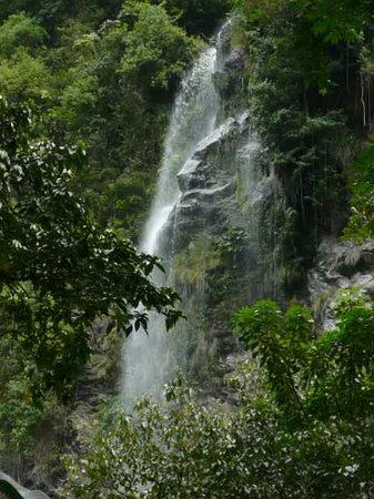 One of over 30 Waterfalls - Picture of Trinidad and Tobago ...  Trinidad And Tobago Maracas Falls