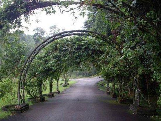 National Botanical Garden Shah Alam Malaysia Top Tips Before You Go Tripadvisor