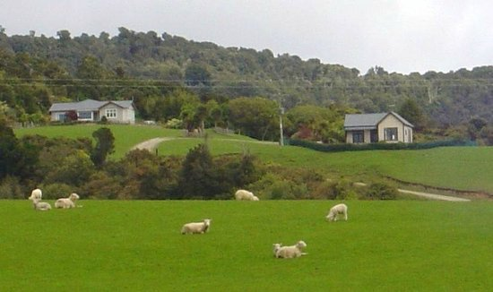 Hilltop Accommodation Catlins: Hilltop Accommodation from Papatowai