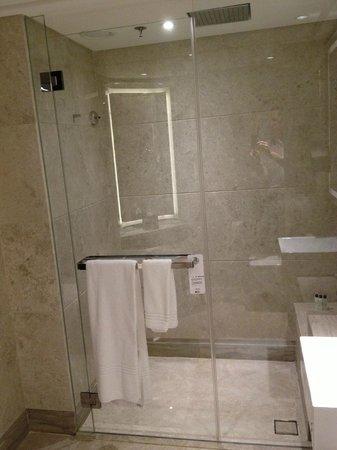 Singapore Marriott Tang Plaza Hotel: Shower