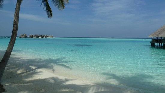 Gili Lankanfushi Maldives: Lovely