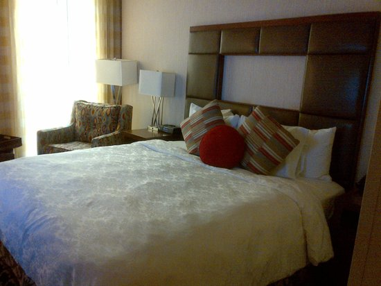 Courtyard by Marriott Denver Downtown: Room 410