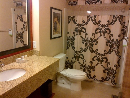 Courtyard by Marriott Denver Downtown: BATH Room 603