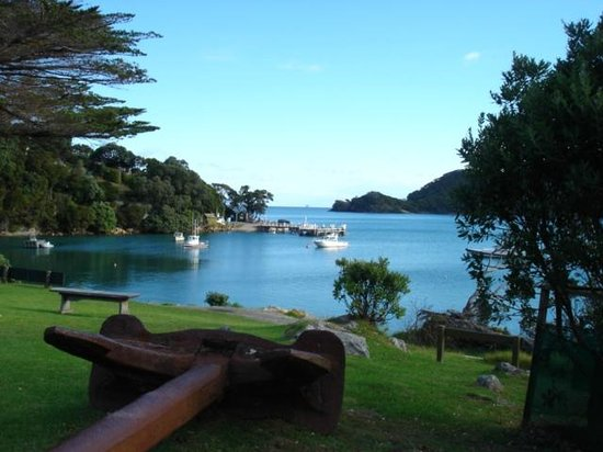 Whangapara, New Zealand: View from lodge