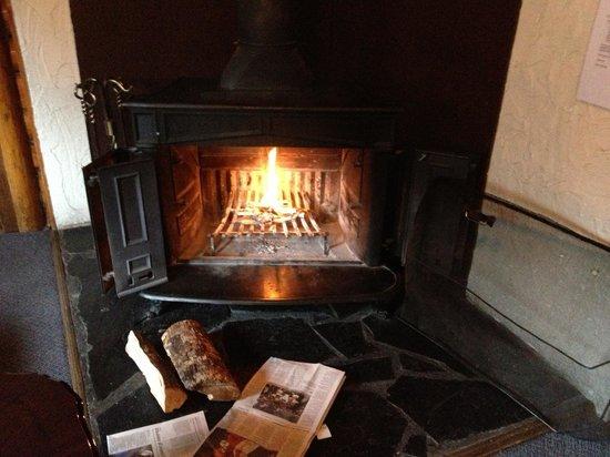 Park Gate Chalets: Fireplace