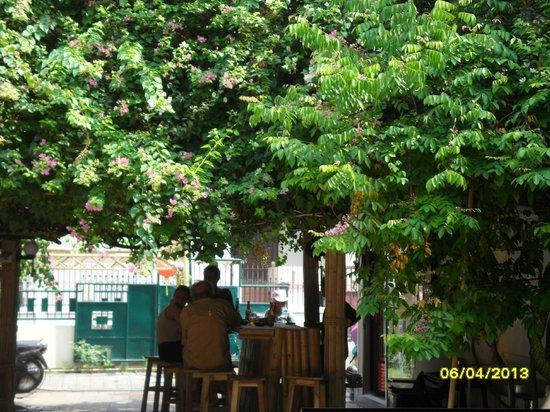 Chiangmai Moli Boutique Hostel: jardin