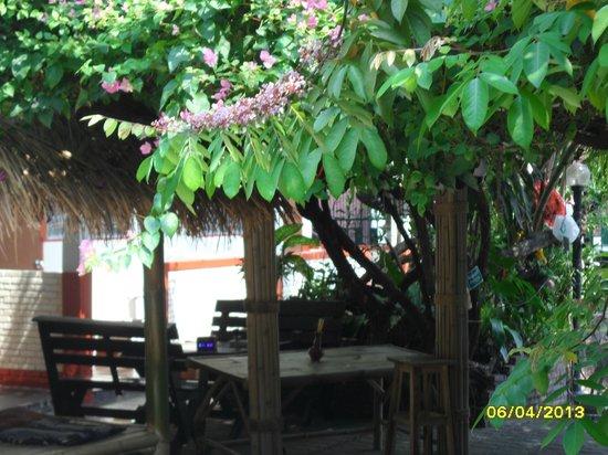Chiangmai Moli Boutique Hostel: le jardin