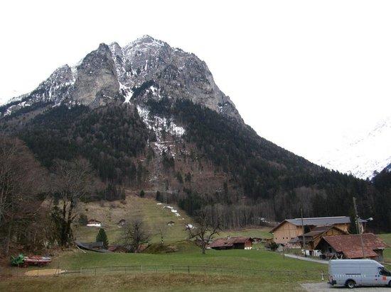 Ufem Egg Ferienwohnungen: surrounding view