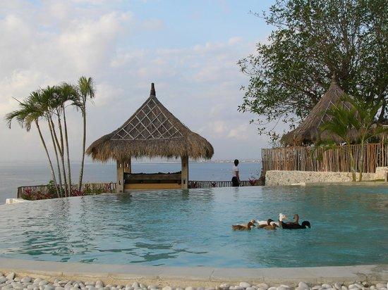 La Joya II Biu-Biu : view and pool